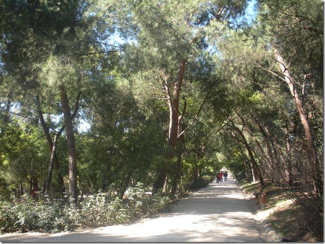 Quinta de los Molinos 079
