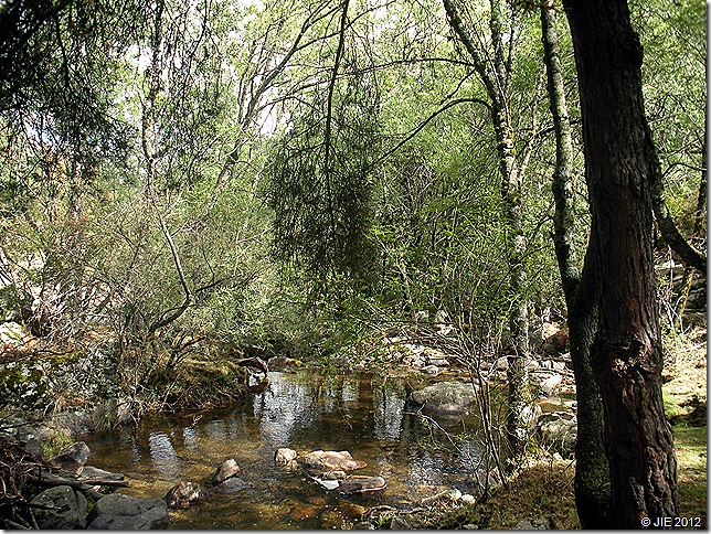 Cascadas del Purgatorio 113