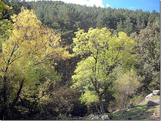 Cascadas del Purgatorio Octubre 2012 089