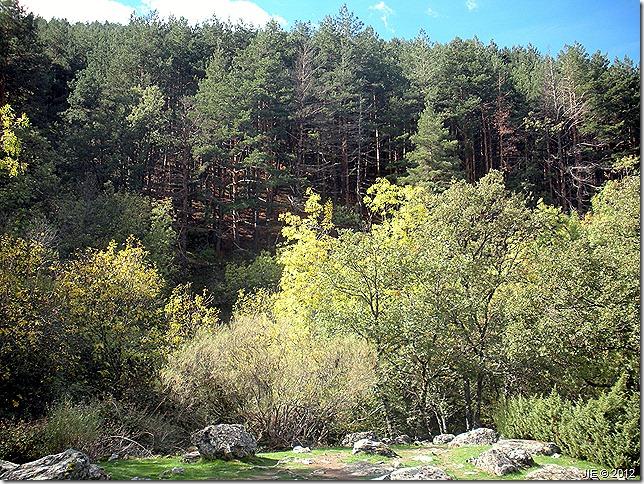 Cascadas del Purgatorio Octubre 2012 091