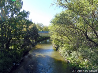 Fotos Parque Lineal del Manzanares 003