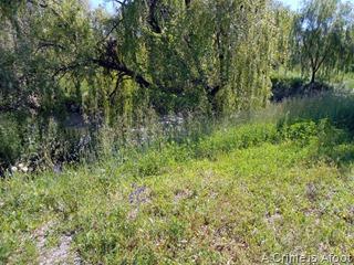 Fotos Parque Lineal del Manzanares 048