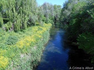 Fotos Parque Lineal del Manzanares 063