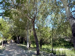 Fotos Parque Lineal del Manzanares 111