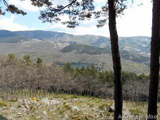 Miraflores de la Sierra 091