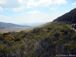 Miraflores de la Sierra 166