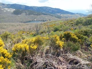 Miraflores de la Sierra 179