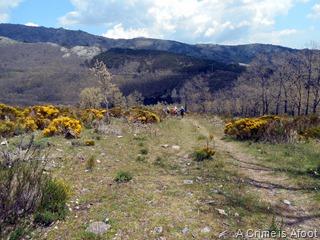 Miraflores de la Sierra 206